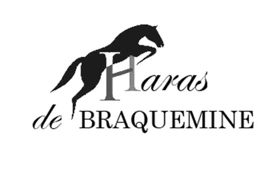 logo haras2